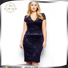 Fashion Lace Plus Size Dress,Fat Women Dresses,Plus size Women Clothing