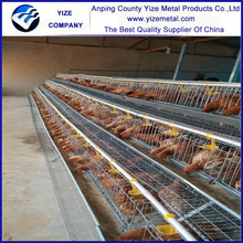 galvanized layer chicken cage for chicken farm sold abroad(best seller in africa)