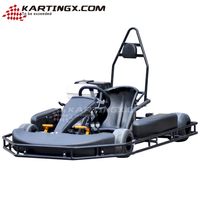 168cc / 250cc / 270cc / 390cc Cheap Karting / Racing Go Kart for Sale