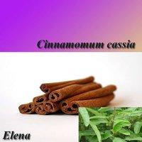 Cinnamomum cassia Presl Extract 5:1 10:1 By TLC