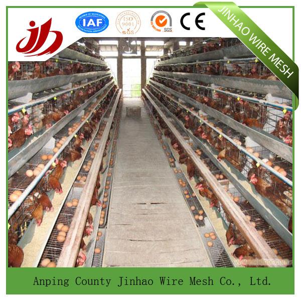 Chicken Cage/Chicken Coop/Cheap Chicken Coops