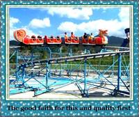 factory direct rides fiber glass roller coaster wheels roller coaster for sale
