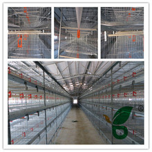2015 popular H type parents chicken cage on sale
