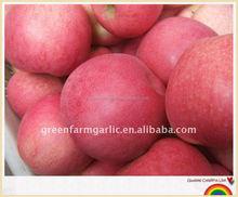 fuji apple factory