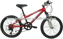 Attractive design Alloy frame Children MTB bike(TMM-20BH)