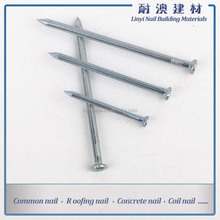 Steel concrete nails used for concrete wall