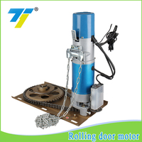 high quality AC series 300kg roller shutter motor trust pass supplier