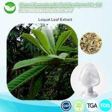 Loquat Leaf Extract 4:1 with Ursolic Acid