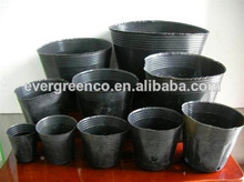 black soft plastic plant pots used on nursery