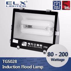 ELX Lighting silver induction flood light