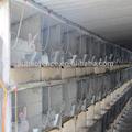 electrosoldado de alambre de malla de la jaula del conejo para el mejor precio y calidad
