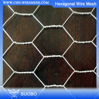 Hot Sale!!! Chicken Coop Iron Wire Mesh Wire Fencing, Galavanized Chicken Hexagonal Wire Mesh, Dog Kennel Hexagon