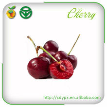 Sweet Cherry Fresh Fruit Exporters China Sencha