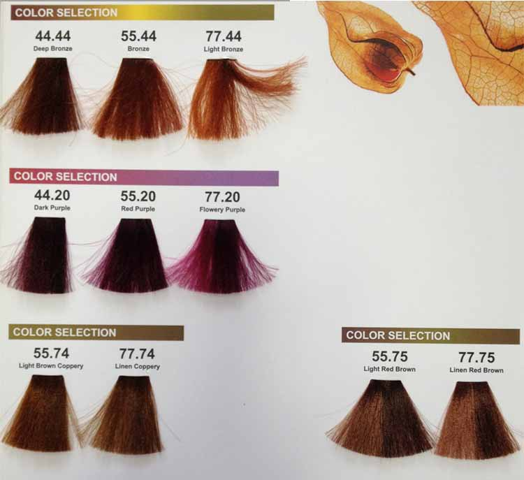 Shades Of Brown Hair Of Hair Color Names With Pictures