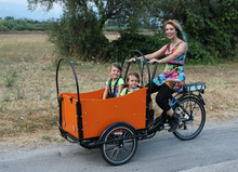 China factory made family use 3 wheel electric cargo bike tricycle/cargo tricycle bicycle/bakfiets for children