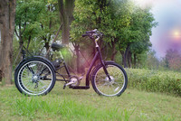 Certification 7speeds tricycle with 24 inch 7019