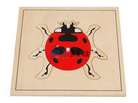 montessori equipment -Lady bug wooden puzzle montessori teaching materials toy