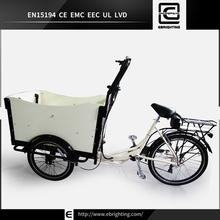 Danish super trike BRI-C01 three wheel motorcycle for the disabled