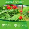 2015 panax ginseng C.A.MEY extract
