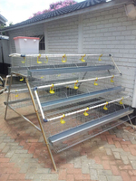 cages for broiler chicken/ chicken laying cage/ folding chicken cage