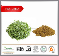 Top quality Bacopa monnieri extract wholesale, Natural Bacopasides 20% in bulk