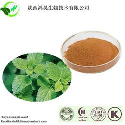 Herb Medicine of Melissa Powder with Rosmarinic Acid