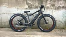 Electric Fat bike/ fat electric bike