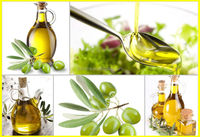 High Efficiency Olive Oil Press Machine For Sale