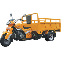 250cc Heavy load power Cargo motorcycle tricycle/three /five wheel motorcycle tricycle