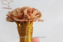La sensación suave de alta calidad al por mayor punta v, punta i, u punta, uñas punta de la queratina del pelo de bonos