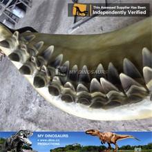 Il mio Dino- m30 simulazione animale denti di squalo fossili