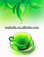 GMP Green Tea Extract Manufactur Natural Green Tea Polyphenols