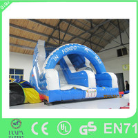 Outdoor New design dry inflatable slide for rental