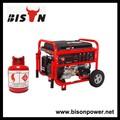Lpg-gas-motor macht china lpg 6,5 kva-generator