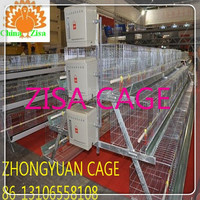 120birds chicken cage poultry breeding equipments