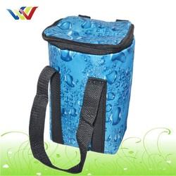 6 can pack thermostat bag cooler bag