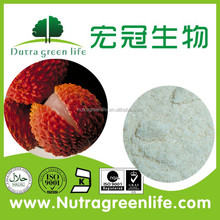 Chinese Lychee seed extract powder CAS NO520-22-33