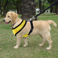Blank Harness with leash for pets and dogs Yellow