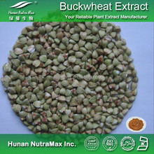 Tartary Buckwheat Extract/Polygonum Fagopyrum Extract/Buckwheat Powder Extract