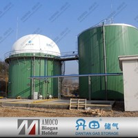 2015 Newest biogas equipment New technology china industrial digester for biogas project