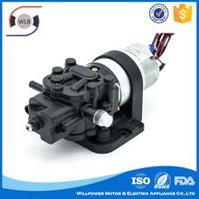 Wholesale From China dc power supply mini water fountain pump/garden pump/home use pump