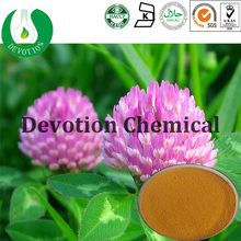 Natural health food red clover extract,HACCP KOSHER FDA 8%-40% isoflavones,manufacturer supply red clover extract