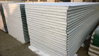 EPS Sandwich Wall Panel / mobile home ceiling panel for cold room panel