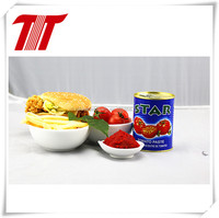 fresh Tomato paste tomato sauce tomato ketchup from Hebei