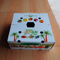 Customized Printed Perforated Carton Box for Fruit