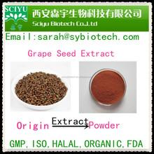 Anti-aging skin care polyphenol grape seed extract