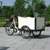 strong frame front loading tricycle cargo bike for sales