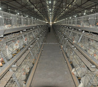 POUL TECH Broiler layer chicken cage