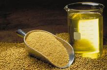 High Quality Crude degummed soybean oil