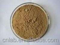 dong guai/Angelica sinensis extract Ligustilide 1%, 2% HPLC Extract Ratio: 5:1, 10:1, 20:1 Polysaccharide 30%50%on sale
